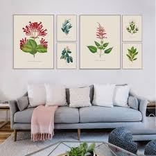 Plant Home Decor by Online Get Cheap Plant Flower Pictures Aliexpress Com Alibaba Group