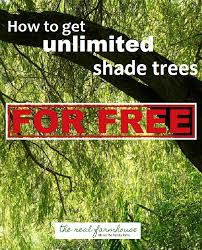 how to get unlimited shade trees for free