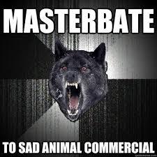 Sad Animal Memes - masterbate to sad animal commercial insanity wolf quickmeme
