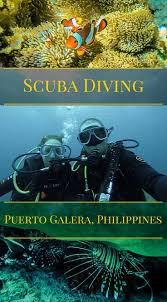 best 25 scuba diving courses ideas on pinterest diving scuba