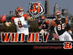 Bengals Who Dey Tiger