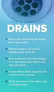 Best Way To Clean Bathtub Drain Best 25 Unclogging Drains Ideas On Pinterest Diy Drain Cleaning