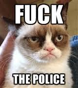 Fuck The Police Meme - fuck the police grumpy cat meme by wavysafe on deviantart