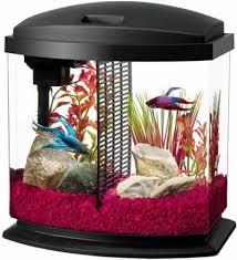 Aqueon Led Light Countrymax Com Pet Supply Center Aquarium Aquariums