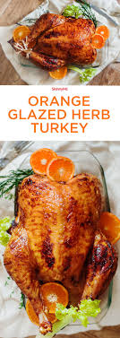 best 25 orange turkey recipes ideas on recipes with