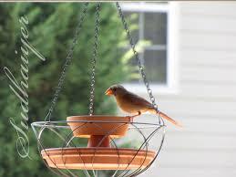diy wild bird hanging planter petdiys com