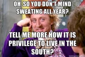 Cosmetology Meme - southern beauty memes pinterest memes