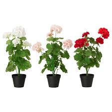 Faux Outdoor Bushes Artificial Plants U0026 Flowers Plants Plant Pots U0026 Stands Ikea