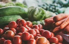 indoor vegetable garden indoor plants expert