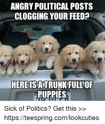 Sick Puppy Meme - angry political posts clogging your feed l hereisatrunkfullof