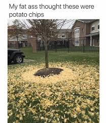 Fat Ass Meme - dopl3r com memes my fat ass thought these were potato chips