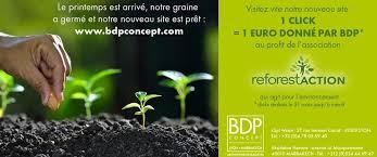 nouveau si e social website 179 planted trees bdp concept