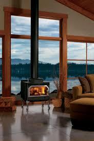 wood burning stoves fireplaces plus