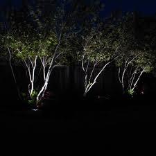 high output solar spot light incredible solar spot for your garden powerbee custodian pics of