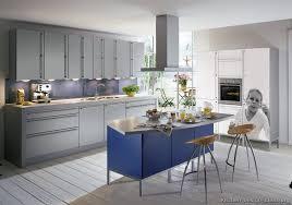 European Kitchen Cabinet Doors European Kitchen Cabinets Pictures And Design Ideas
