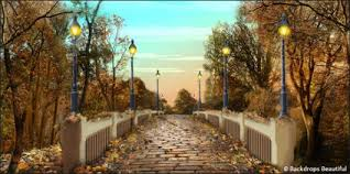 backdrops beautiful walk in the park autumn backdrop 1 backdrops beautiful