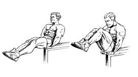 Leg Lift Bench Personal Trainer Weight Training Leg