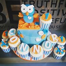 Giggle And Hoot Decorations 56 Best Cakes By Koda U0027s Kakes Images On Pinterest Reptiles