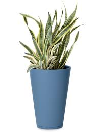 unique indoor planters elitetile penny x porcelain mosaic tile in denim blue 8quot arafen