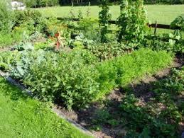 useful organic farming methods all organic gardening