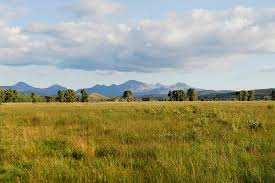 wyoming ranches farms and recreational properties for sale swan
