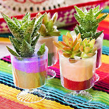 Mexican Themed Decorations Mexican Party Mini Cactus Decorations Idea Party City