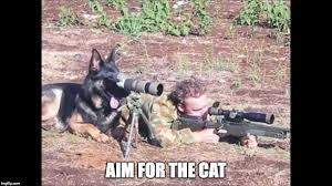 military humour memes imgflip