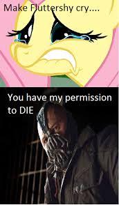 Mlp Fluttershy Meme - bane and fluttershy meme combo by iam artist on deviantart