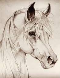drawn horse pinterest pencil and in color drawn horse pinterest