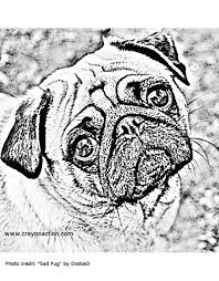 pug coloring page by sheila fisher crayon action coloring pages