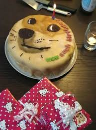 Birthday Cake Dog Meme - pin by ms c on awesome birthday memes pinterest birthday memes