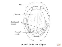 human mouth and tongue coloring page free printable coloring pages