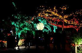 Light The Night Houston Beat The Crowds U0026 Save Money At Houston U0027s Favorite Zoo Lights