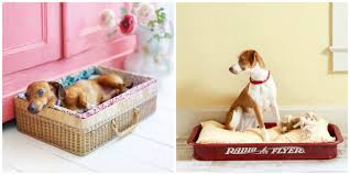 Cheap Dog Beds For Sale Dog Beds For Cheap Vnproweb Decoration