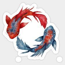 yin yang koi fish japanese koi yin yang sticker teepublic