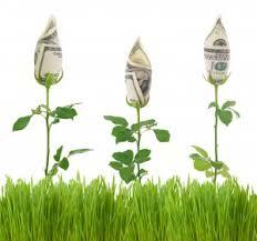money flowers catherine s financial detox mcgillespie