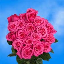 Global Roses Pink Tanoshi Roses Bouquet Of Pink Roses Global Rose