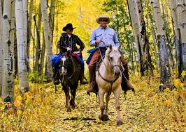 how far can a horse travel in a day images Colorado horseback riding trips horseback riding in colorado gif