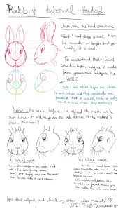 rabbit drawing tutorial pt2 understand the head by ladyfiszi on