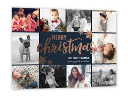 12 christmas card ideas with dogs shutterfly