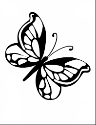 spectacular coloring page butterfly drawings with coloring pages