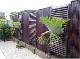 backyards wonderful bamboo fencing design ideas fence and gate