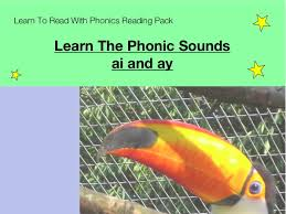 ng ai and qu phonic worksheet by pandapop25 teaching resources