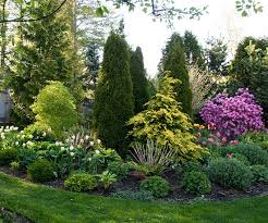 Small Trees For Backyard by Small Yard U0026 Small Garden Landscaping Ideas Shrub Evergreen And