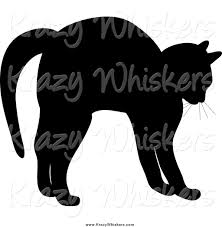 scared black cat outline arched black cat silhouette 21 best