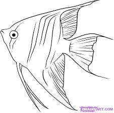 25 easy fish drawing ideas kids drawing
