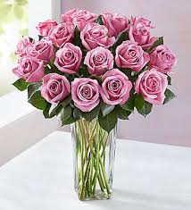 Free Vase Peppermint Roses Buy 12 Get 6 Free Free Vase 18 Stems With