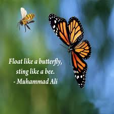float like a butterfly sting like a bee muhammad ali picture
