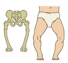 skeletal system problems and diseases ck 12 foundation