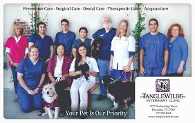 tanglewilde veterinary clinic veterinarian in houston tx usa